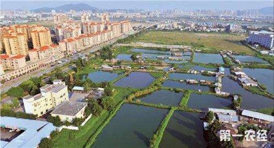 江苏吴江打破城乡壁垒 实践融合发展
