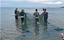 长江干流捕捞产量不足10万吨 长江生态保护刻不容缓