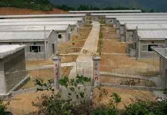新建的养猪场要怎么办理环评手续?以下四大点告诉你