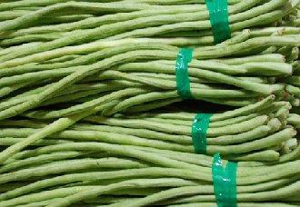 <b>订单农业助增收,农民大胆种豇豆</b>