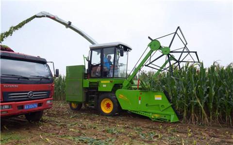 河北磁县智能农机助收割 节约成本效率高