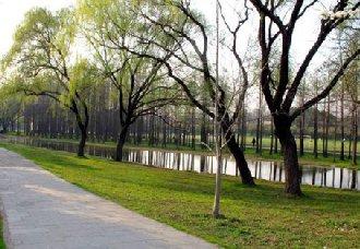 <b> 北京:永定河沿线将新增滨河森林 面积达18万亩</b>