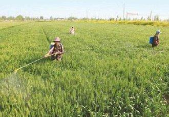 我国农科院植保所发现农药及控制释放的新材料 提高农药利用率