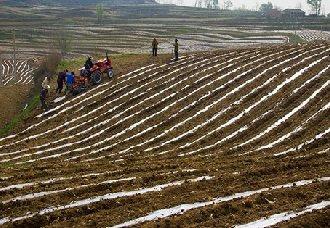 陕西淌泥河:科技助旱塬地膜玉米增产