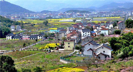 乡村振兴战略提出一周年间 乡村发展提速明显