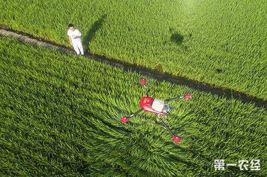 中国农业科技发展报告 展示中国农业科技发展成果