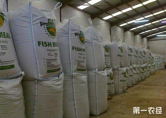 2018年10月23日国产鱼粉价格行情