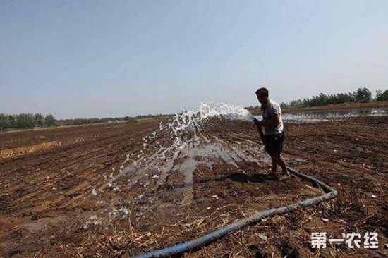 今年黄淮地区降水较少 农业农村部派工作组指导抗旱