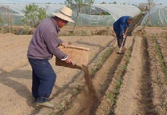 <b> 我国安徽再添6个果菜茶有机肥替代化肥新增试点县</b>