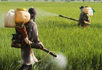 <b>环保达标的农药企业在未来将更有广阔发展空间</b>