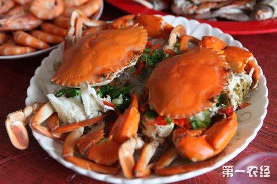 常州一女子连吃4蟹得胰腺炎 螃蟹虽美但不宜多吃
