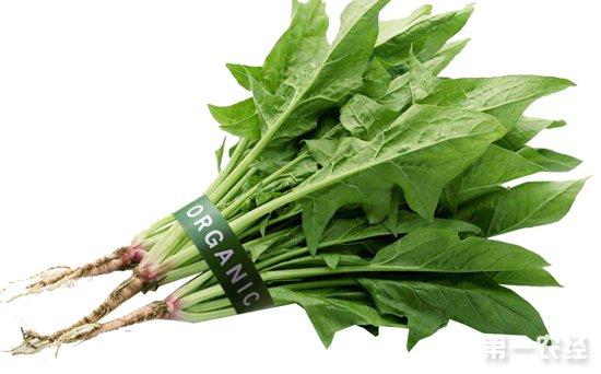 天津上周(10月21日-27日)蔬菜价格行情分析