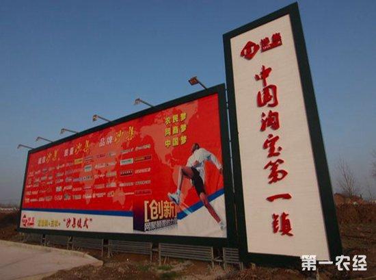 江苏沙集镇:电子商务不断勃兴,信息化让农村更美好