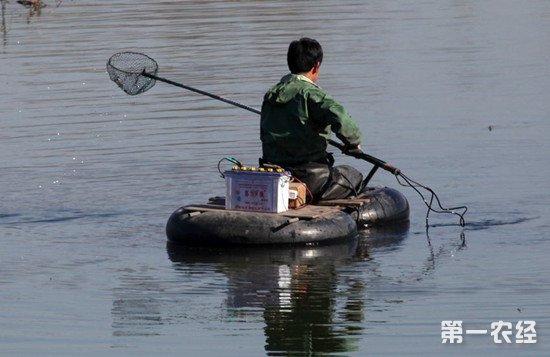 农业农村部对电鱼行为进行专项打击