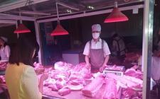 <b>猪价8字头一路跌,肉价回到10年前!</b>