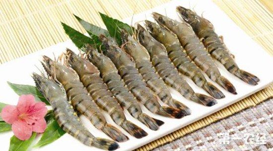 草虾要怎么养?草虾的养殖技术