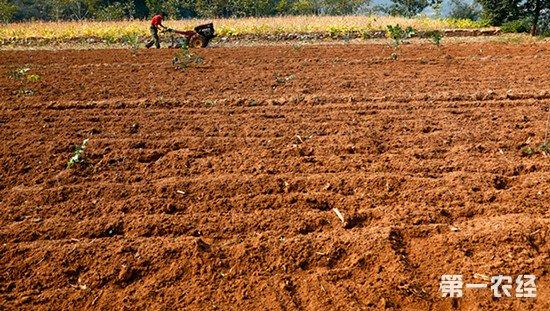 安徽省国土资源厅强调 农村土地征用必须尊重农民意愿