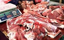 <b>近期猪价行情稳中调整 11月中下旬有望季节性上涨</b>