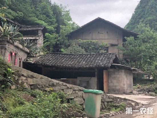 重庆市加强贫困县失业保险等补贴 加强贫困人口就业补贴