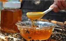 蜂蜜不是纯蜂蜜?警惕商家的这种伎俩