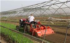 """蔬菜连续种植产量低 """"湿旱轮作""""解难题"""