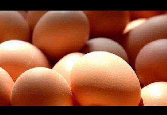 <b>市场走货一般,蛋价维持高位的原因是什么?</b>