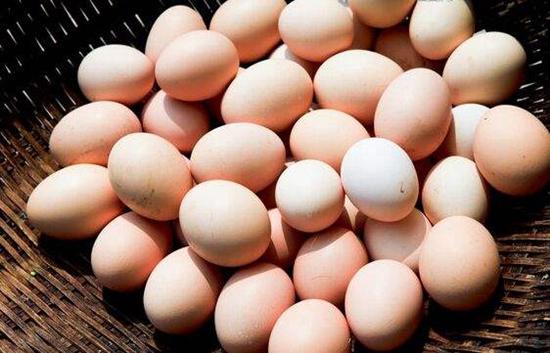 2018年11月21日鸡蛋市场行情如何?今日鸡蛋行情概述