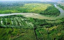 国土绿化在行动:2020年森林覆盖率必超23%