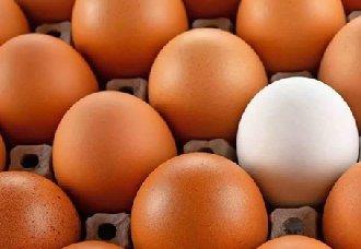 <b>中国蛋品深加工产量增加,市场前景广阔</b>