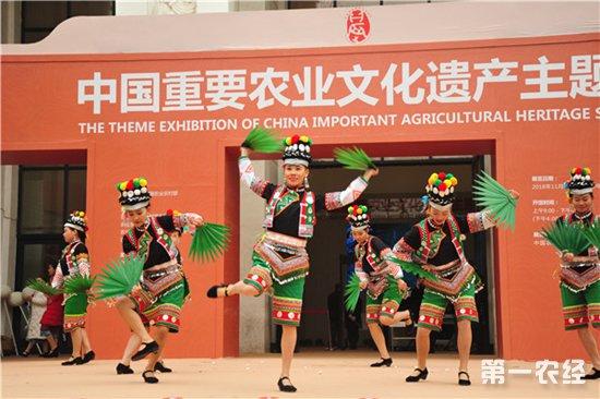 弘扬中华农耕文化 为期3个多月的主题展在京举行