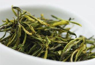 贵州正安县燕子坝村的正安白茶 成为当地脱贫致富的主力军