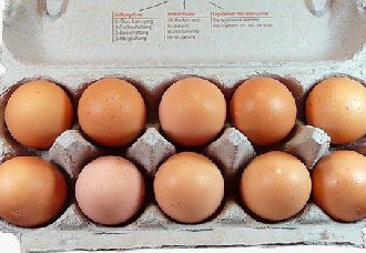 <b>食品安全受重视,未来蛋业发展更需要品牌化</b>