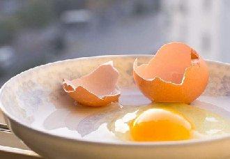 <b>市场走货一般销售进入淡季,蛋价涨不动跌不落</b>