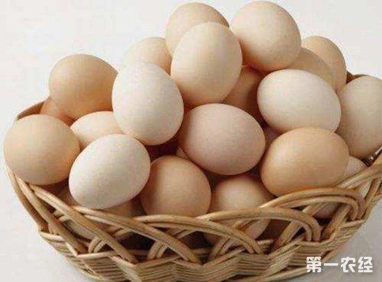 市场走货一般销售进入淡季,蛋价涨不动跌不落