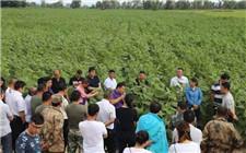 湖南省科技扶贫全覆盖 科技特派员深入贫困村一线