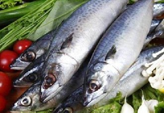 鲅鱼一斤多少钱?