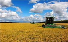 牡丹江市积极发展现代农业 连续五年农民收入增长千元