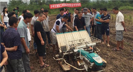 我国加强职业农民培训 为发展壮大职业农民队伍创造条件