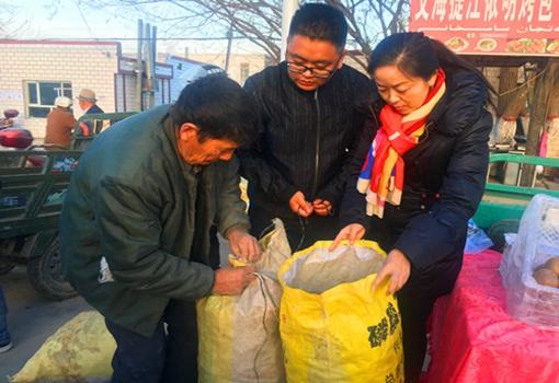 新疆轮台县:550公斤核桃滞销核桃获工作队帮助找到销路