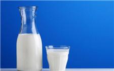 鲜牛奶真的比加工后的好吗?专家介绍有一定风险
