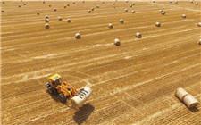 秸秆综合利用 保了生态富了农家