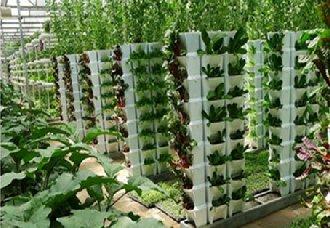 四川西充县农业与科技创新相结合 实现智慧农业化
