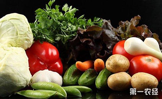 黑龙江省牡丹江市这10种蔬菜价格环比上涨5%
