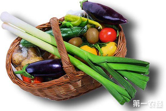 江苏盐城:入冬后蔬菜价格不升反降