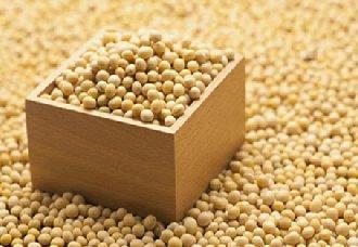 美国农业部长表示 中国或将在元旦前后进行采购美国大豆