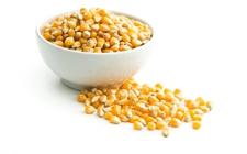 """农资采购需谨慎,玉米种子不要挑""""大粒"""""""