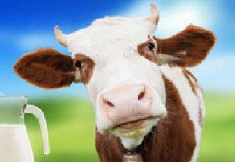 江苏:出台保障乳品质量安全的实施意见