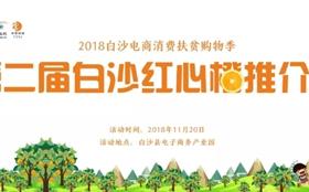 """<b>「196万」第二届白沙红心橙推介会,拍出8000元""""果王""""</b>"""
