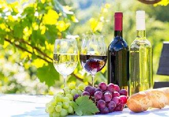 葡萄酒中为什么会有涩味?葡萄酒涩味的来源介绍