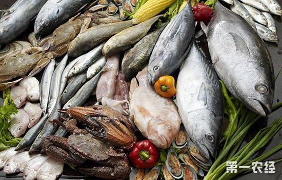 山东威海:降雪天气影响不大 淡水鱼价格走势平稳
